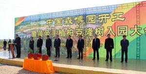 黄帝手植柏克隆树正式入驻中国森博园