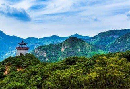 山东实施造林绿化十大工程
