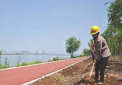 山东沂河滨水景观提升工程近期将栽植白皮松、银杏、红