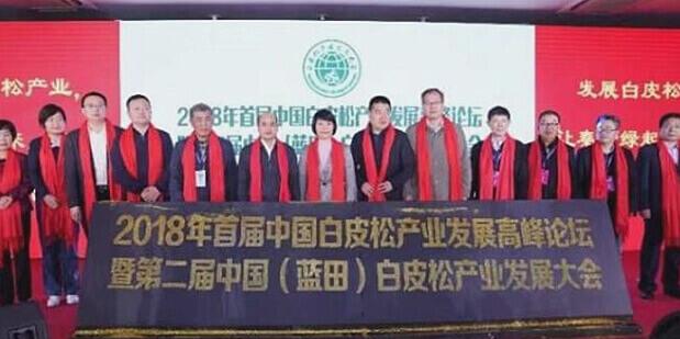 第二届中国蓝田白皮松产业发展大会 1